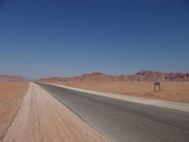 Desert road. At Jordan stock photo