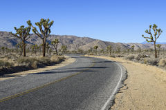 Free Desert Road Royalty Free Stock Image - 36651256