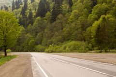 Desert road in the Carpathians Royalty Free Stock Photography