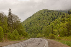 Desert road in the Carpathians Stock Images