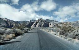 Desert road. Empty spooky road through Sonora desert Stock Images