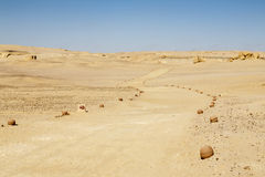 Desert Road. Footpath in the middle of the desert of Fayoum, Egypt Stock Images