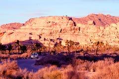 Desert road in Joshua Tree State Park. Sunset on a desert road in Joshua Tree State Park royalty free stock image