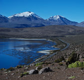 Desert road by a lake. Chungara lake in Lauca National Park, located in north Chile Royalty Free Stock Image