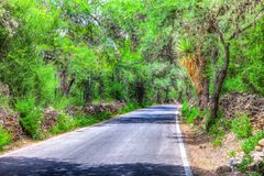 Desert Road leading into Armadillo de low infantes royalty free stock image