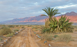 Desert road near a border between Jordan and Israel Stock Photos