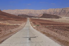 Desert road. Road in the Negev desert, Israel Stock Photography