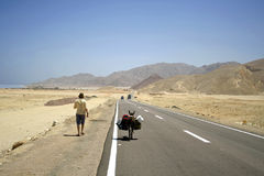 Desert road in the red sea Stock Image