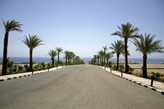 Desert road in the red sea reg royalty free stock photos