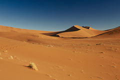 Sand dunes in Namib desert Royalty Free Stock Photo