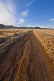 Desert Road Vertical Royalty Free Stock Photo