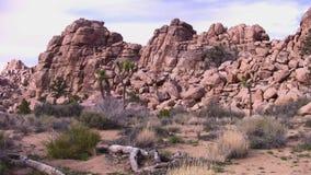 Desert Rock Ridge Joshua Tree Park California. USA stock footage