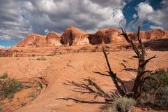 desert rocky Στοκ εικόνα με δικαίωμα ελεύθερης χρήσης
