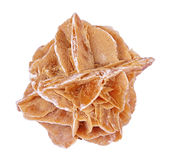 Desert rose. Close up image of a plaster plates, isolated (clipping path Stock Photos