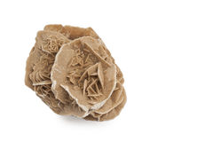 Desert rose Stock Photo