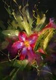Desert Rose flower. Beautiful painting showing Desert Rose flower Stock Images