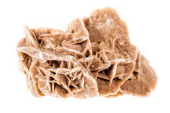 Desert rose Royalty Free Stock Photography