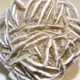 Desert rose rosette crystal closeup stock photography
