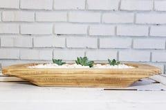 Desert rose on white pebbles inside a wooden bowl Royalty Free Stock Images