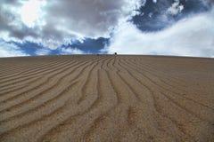 Desert rows Royalty Free Stock Photos