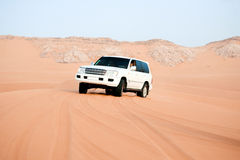 Desert safari. United Arab Emirates stock photography