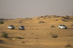 Desert safari in Dubai. Stock Image