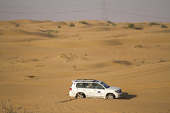 Desert safari in Dubai. Royalty Free Stock Image