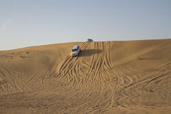 Desert safari in Dubai. Royalty Free Stock Photos
