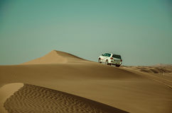 Desert Safari Stock Image