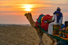 Desert safari at sunset in Rajasthan. Desert safari in a camel cart at sunset in Rajasthan, India royalty free stock photos