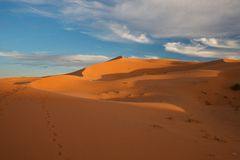 Desert Sahara. Gold sand and blue sky Royalty Free Stock Photo