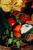 Desert Salsa & Chips Stock Images