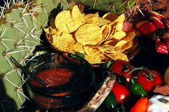 Desert Salsa & Chips. Bowls of salsa and chips with plate of ingredients in the hot desert sun royalty free stock image