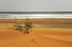 Desert and Salt flat royalty free stock photos