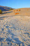 Desert Salt Pan Royalty Free Stock Photography