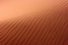 Desert sand Stock Images