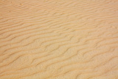 Desert sand Royalty Free Stock Photos