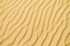 Desert sand background Royalty Free Stock Photos
