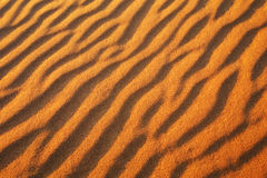 Desert sand background. Stock Photography