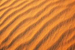 Desert sand background. Royalty Free Stock Image