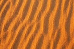 Desert sand background. Stock Photography