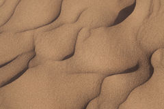 Desert sand background Royalty Free Stock Photography