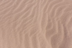Desert- sand background with waves Royalty Free Stock Images