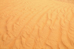 Desert sand close up Stock Images