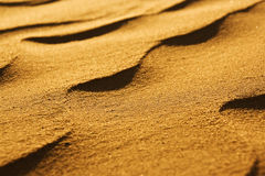 Desert sand close-up Stock Image