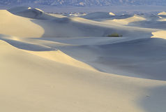 Desert Sand, Death Valley, California Royalty Free Stock Images