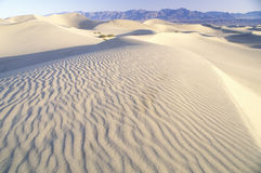 Desert Sand, Death Valley, California Royalty Free Stock Photography