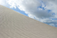 Desert Sand Dune Stock Photography