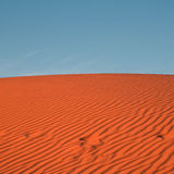 Desert sand dune Royalty Free Stock Photos