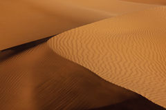 Desert sand dune with shadow. Desert sand dune in sunlight with shadow Stock Photography